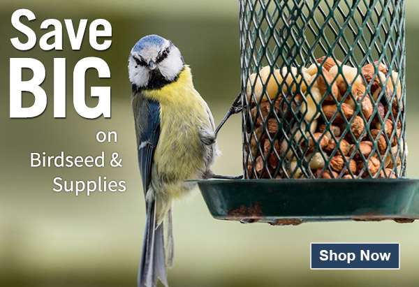 Wild Bird Seed Products